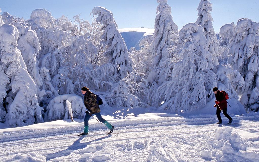 ski_nordique